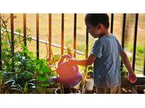 Jardinage : quels jeux choisir pour les enfants ?