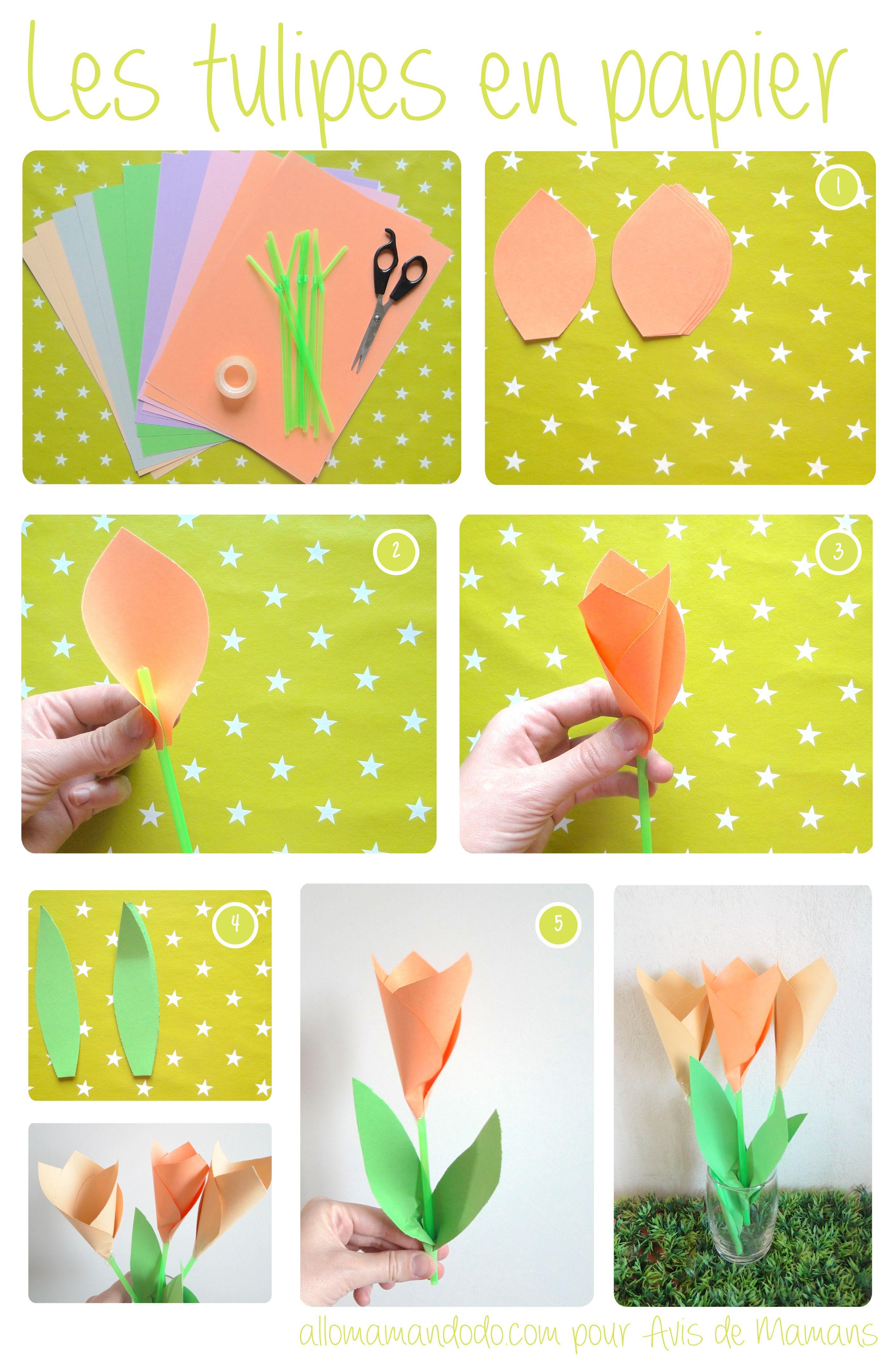 tulipes (img)