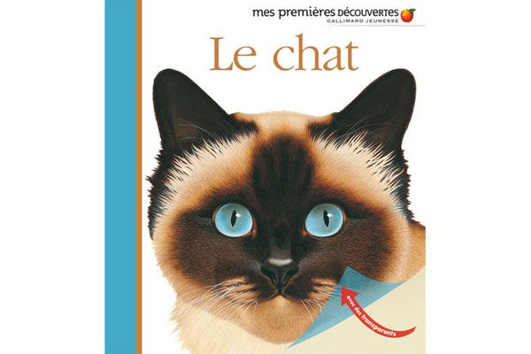 Img Le chat