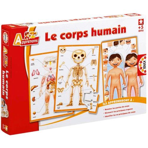 Des puzzles sur le corps humain !
