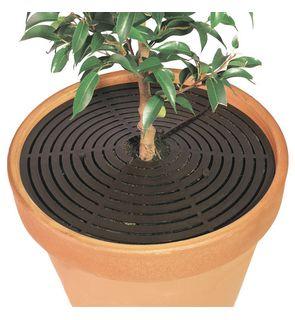 2 protections rondes pour pots de fleurs