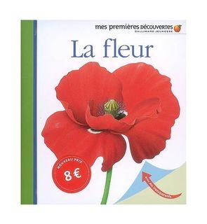 La fleur, mes premières découvertes