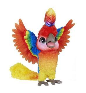 Show Coco le perroquet star