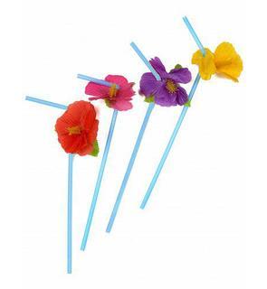 12 pailles fleurs